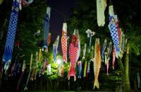 8 lễ hội lớn trong tháng 4 ở Nhật Bản không nên bỏ qua