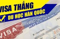 DU HỌC HÀN QUỐC - VISA THẲNG