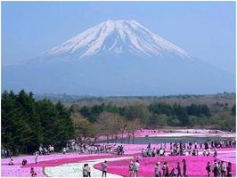 Các công việc làm thêm trong trường học tại Nhật Bản