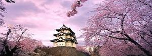 Tìm hiểu VISA du học Nhật Bản