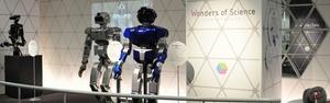Trong thế giới ROBOT
